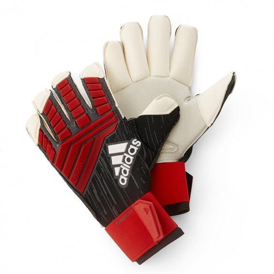 Guardian Gloves Predator 2018-19